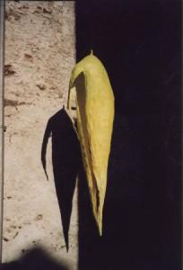 """Kokon"", Papier, 40cmX40cmX165cm, 2003"